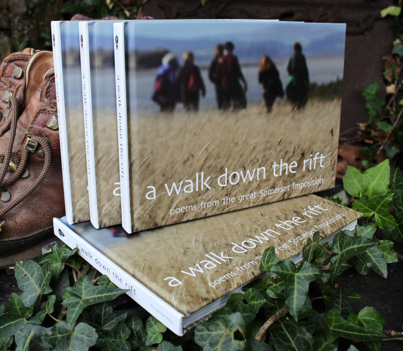 Photograph of A Walk Down the Rift books